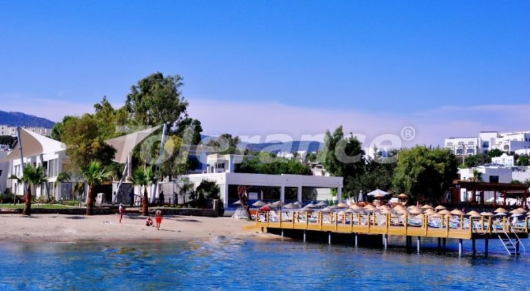 Luxury apartments in Bodrum by the sea - 17444 | Tolerance Homes