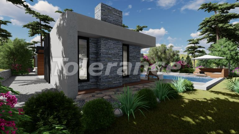 Luxury villas in Bodrum with private pool and installments from the developer - 30640   Tolerance Homes